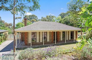 17 Mcgilp Road, One Tree Hill SA 5114