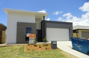 Picture of 14 Petrel Crescent, Mountain Creek QLD 4557