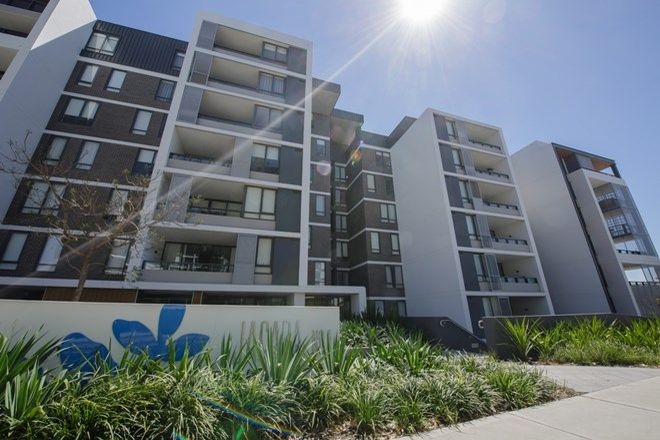 Picture of 303N/1 Lardelli drive, RYDE NSW 2112