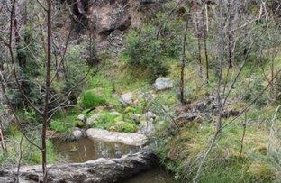Picture of 29 Catarrh Creek Road, Torrington NSW 2371