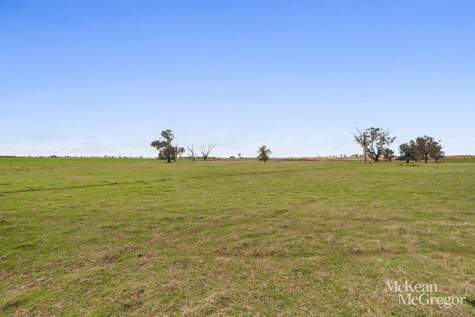 Lot 2 Bendigo-St Arnaud Road, Newbridge VIC 3551, Image 0