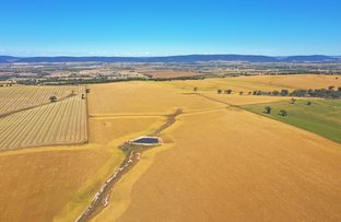Picture of Scenic Rd, Young NSW 2594