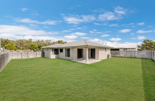 Picture of 14 Shark Court, Mount Louisa QLD 4814