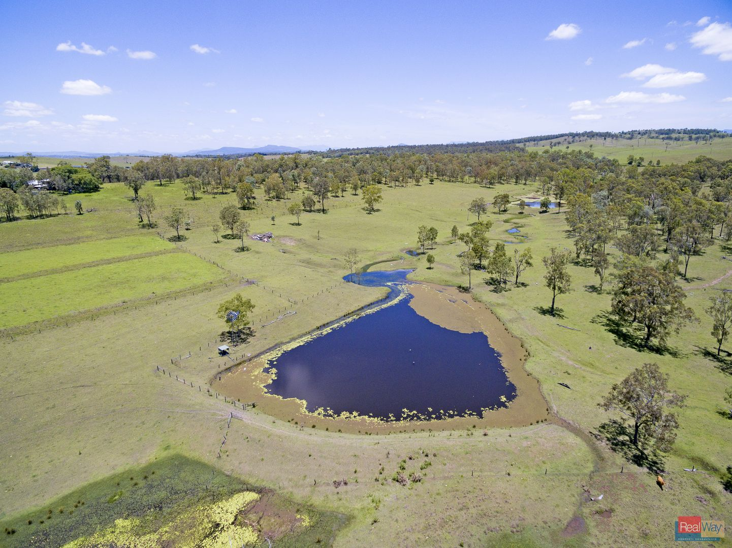 1080 Coleyville Road, Coleyville QLD 4307, Image 2