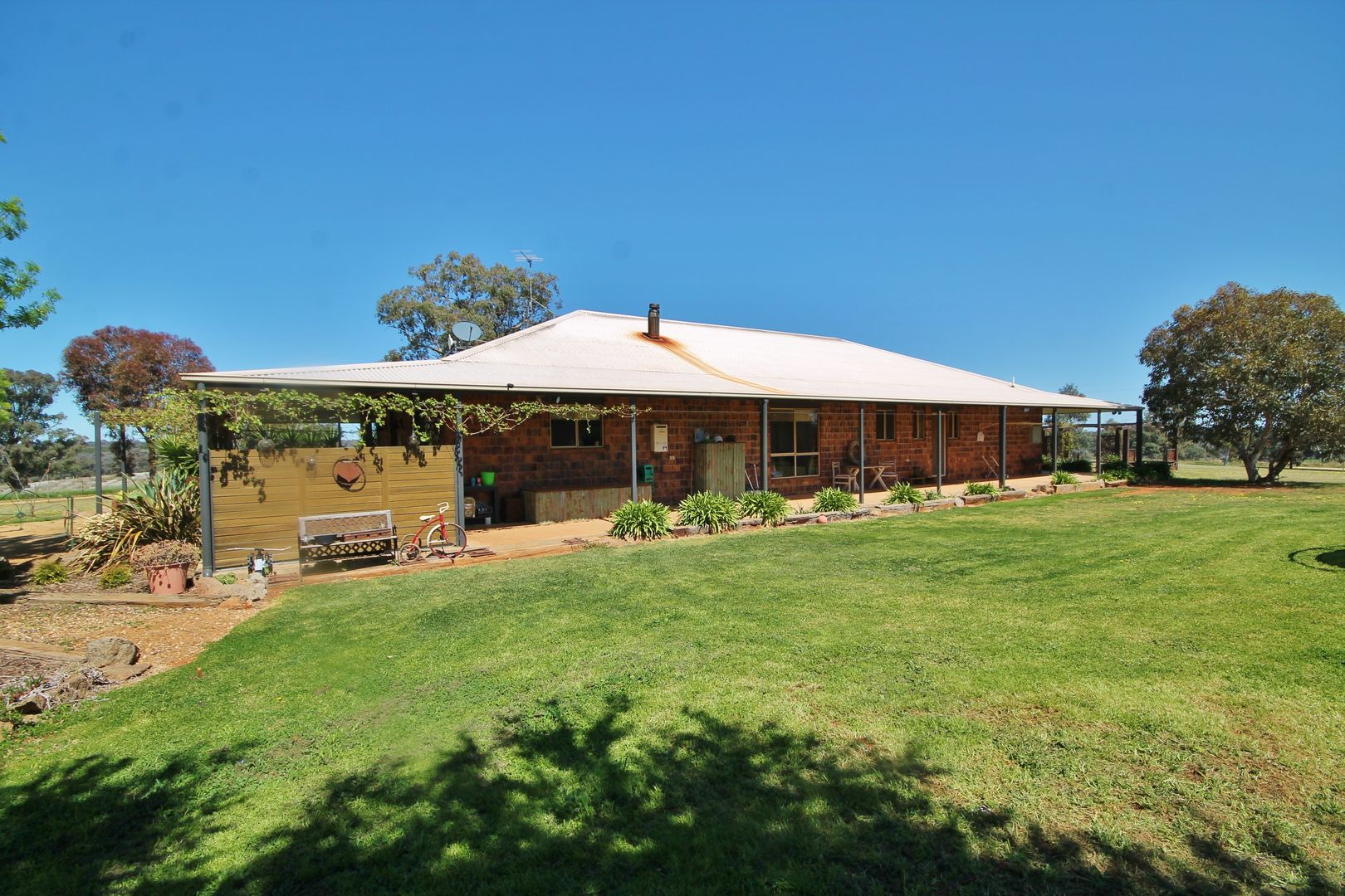 603 Spring Creek Road, Young NSW 2594, Image 0