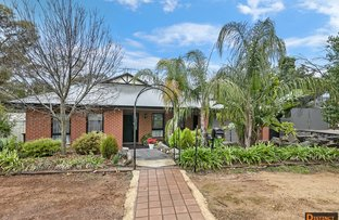 Picture of 98 Lyndoch Road, Gawler East SA 5118