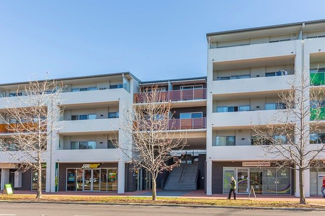 Picture of 183/142 Anketell Street, GREENWAY ACT 2900
