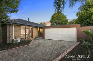 Picture of 12 Andrew Place, Mornington VIC 3931
