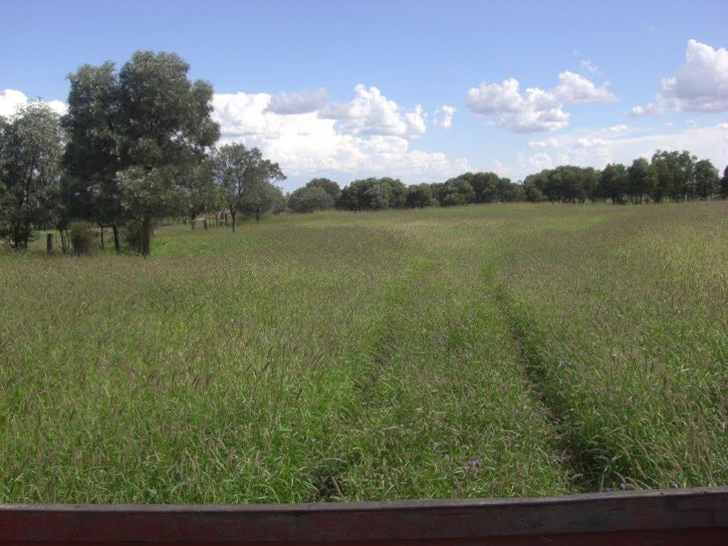 0 Argyle Park, Wallumbilla QLD 4428, Image 1