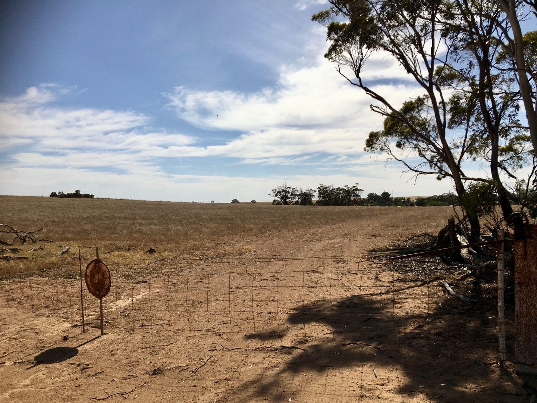 86 Franceys Road, Poochera SA 5655, Image 2