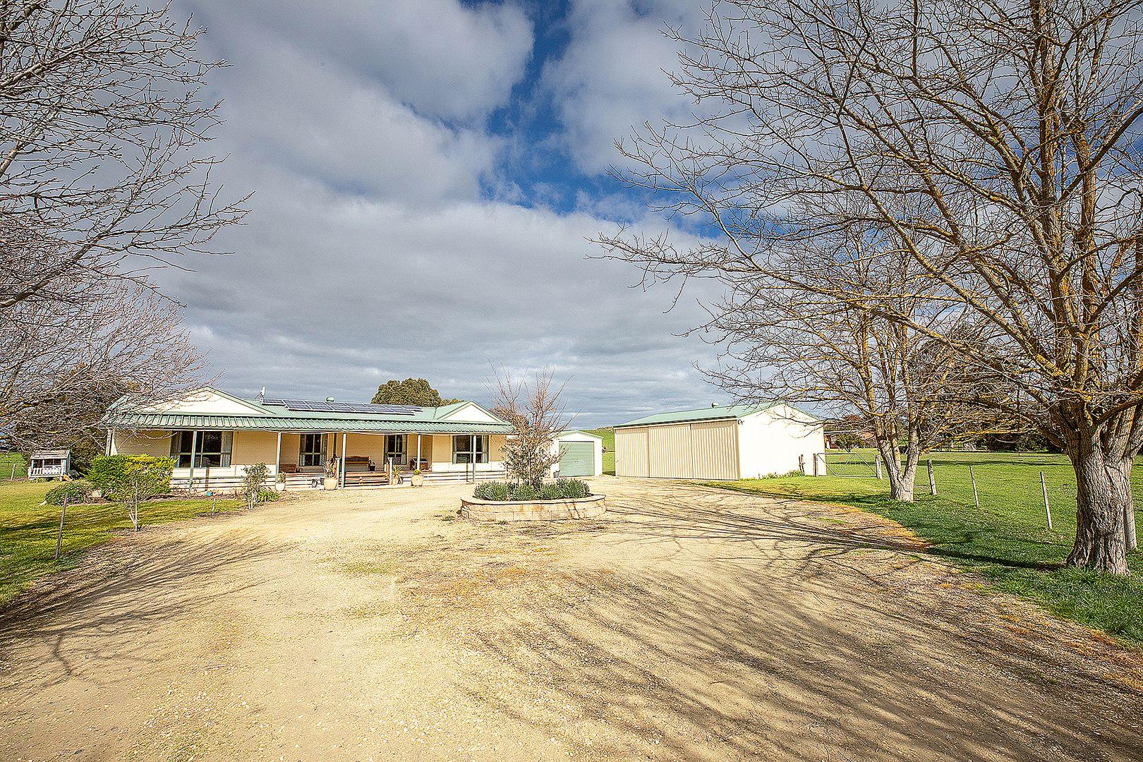 64b Wilkins Road, Naracoorte SA 5271, Image 0