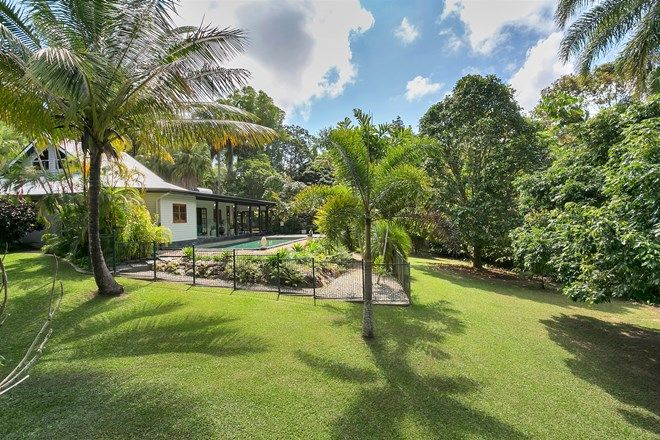 Picture of 31 Masons Road, KURANDA QLD 4881