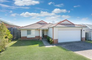 Picture of 17 Isabella Street, Collingwood Park QLD 4301