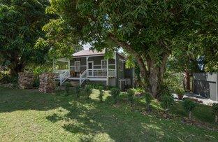 Picture of 10 Crescent Road, Eumundi QLD 4562