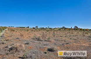 Picture of Lot 4/213 Nerrum Avenue, Red Cliffs VIC 3496