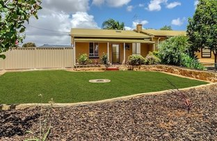 Picture of 12 Langford Tce, Salisbury North SA 5108