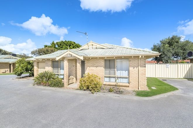 Picture of 7/9 Holland Street, GERALDTON WA 6530