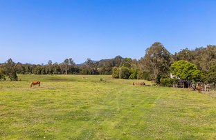 Picture of 227 Cedar Creek Road, Belli Park QLD 4562
