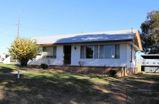 Picture of 170 Chums Lane, Young NSW 2594