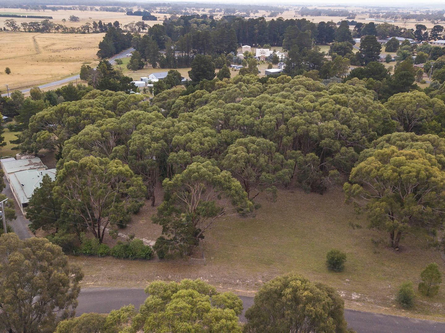 Lot 57 Briardale Avenue, Enfield VIC 3352, Image 2