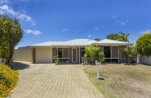 16 Throssell Place, Clarkson WA 6030