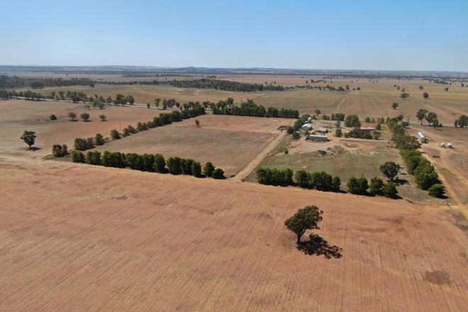 Picture of 8242 Newell Highway, MIRROOL NSW 2665