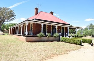 Picture of Henry Lawson Way, Grenfell NSW 2810