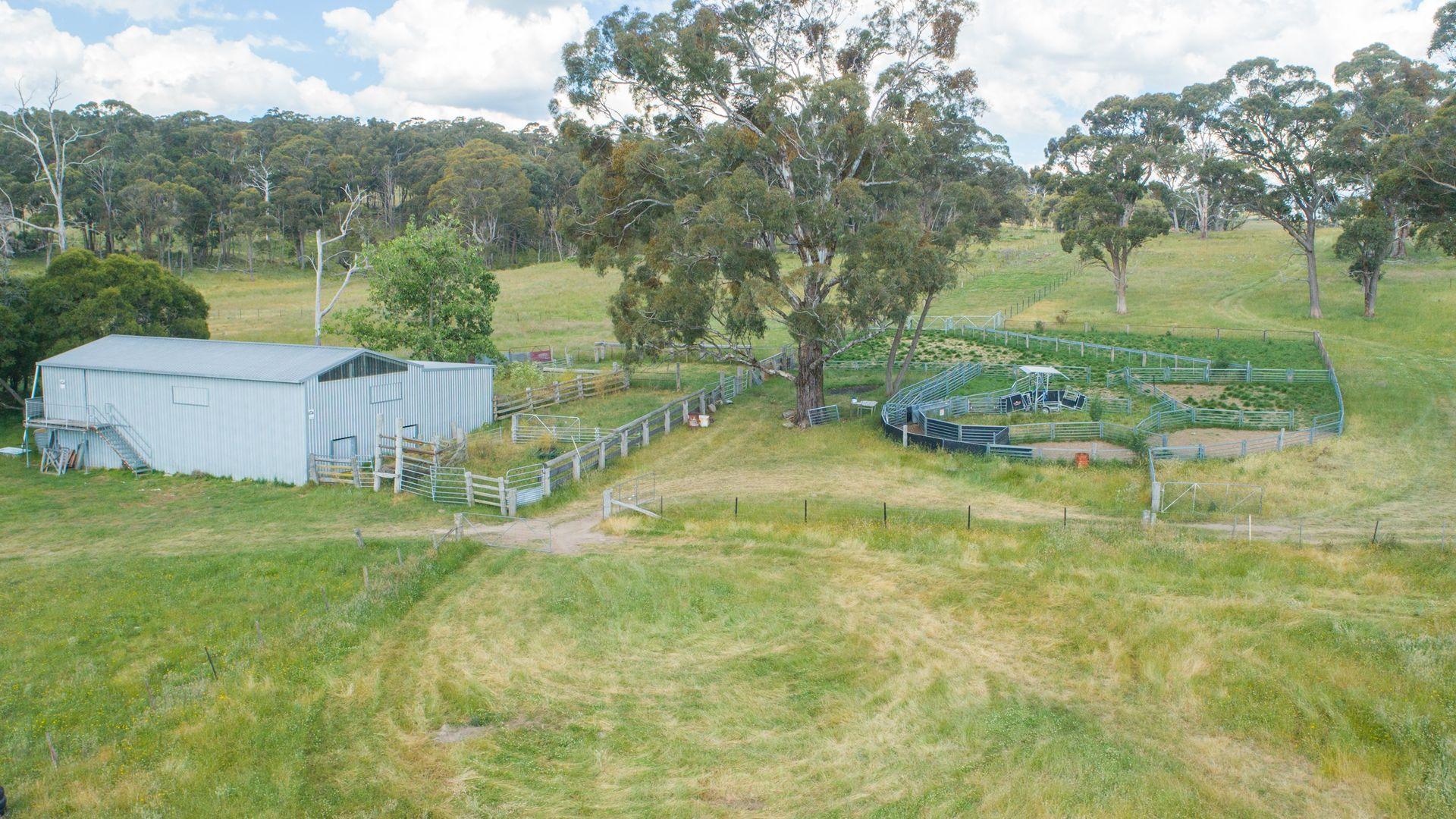 Tara East, 431 Wards Mistake Road, Guyra NSW 2365, Image 2