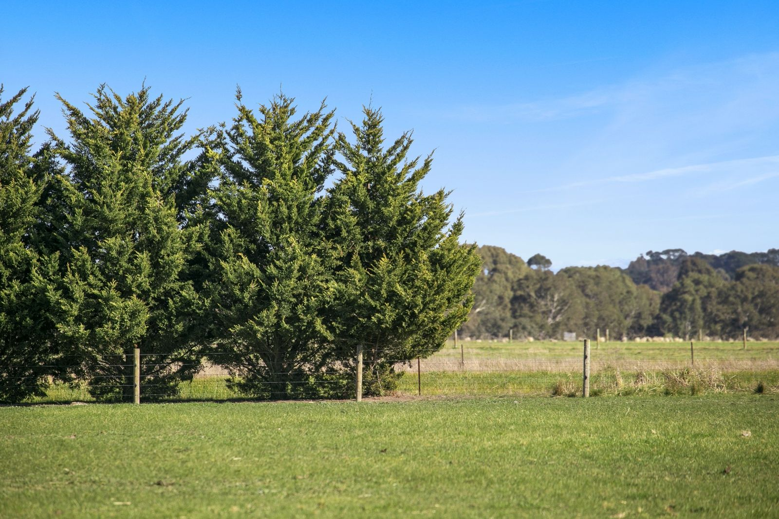 Lot/88a River Road, Inverleigh VIC 3321, Image 2
