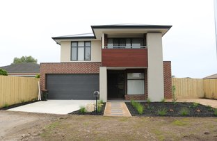 Picture of 11 Hani Court, Torquay VIC 3228