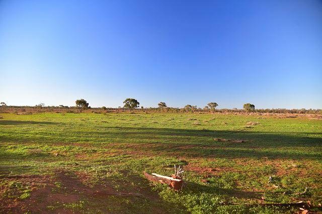 * Yanda Downs, Cobar NSW 2835, Image 0
