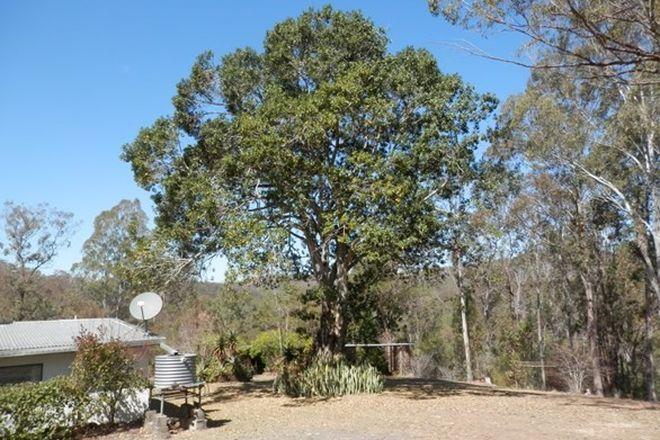Picture of 287 Ewingar Ridge Rd, EWINGAR NSW 2469