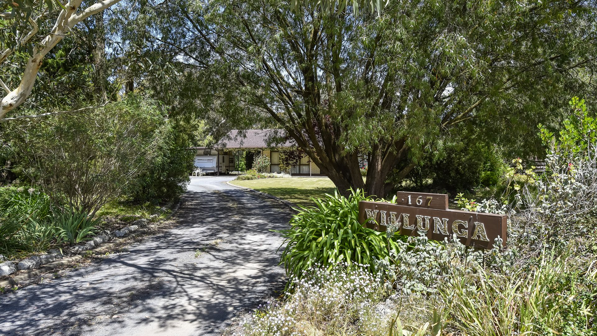 167 Williams Road, Millicent SA 5280, Image 1