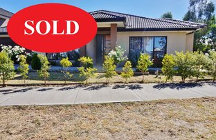 SOLD/34 Bridgehaven Drive, Craigieburn VIC 3064
