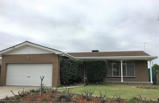 Picture of 1026 Ruth Street, North Albury NSW 2640