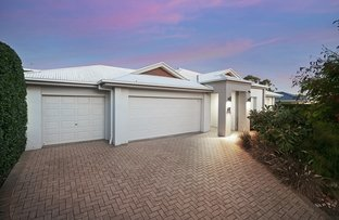 Picture of 36 Balgowlah Street, Wakerley QLD 4154