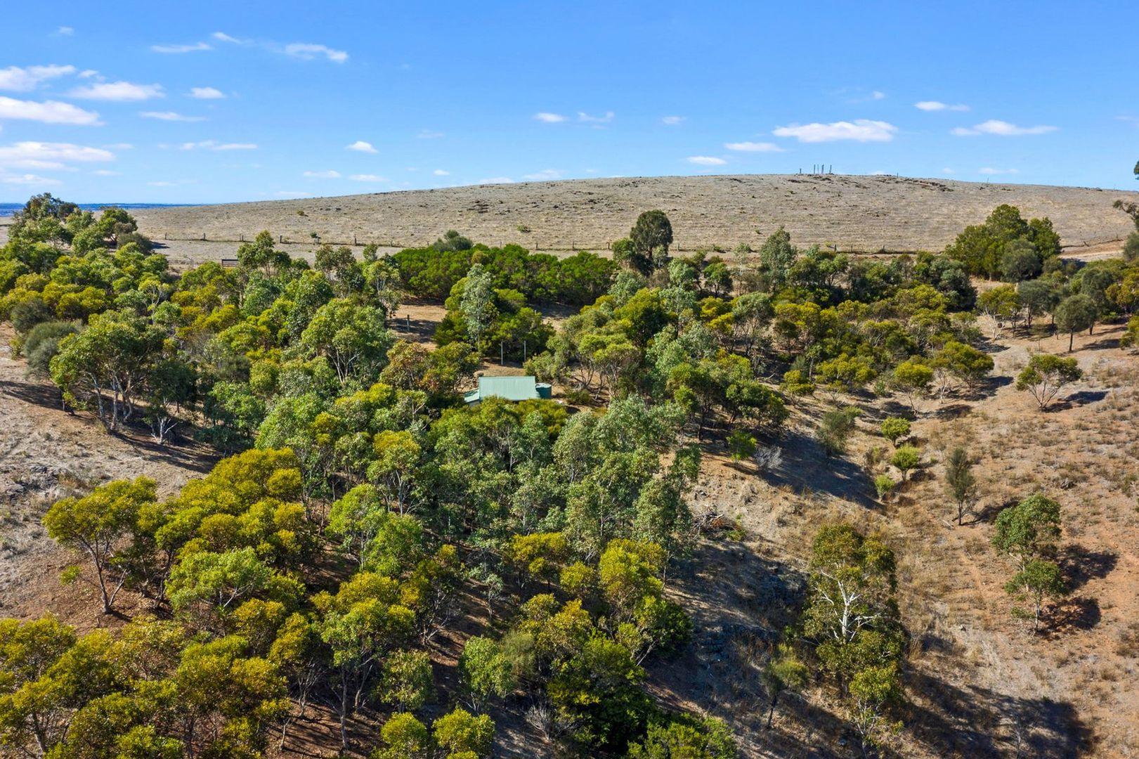 Lot 7 Braeside Road, Mount Observation SA 5255, Image 1