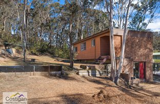 Picture of 8 Mistral Street, Katoomba NSW 2780