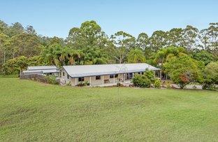 260 Diddillibah Road, Diddillibah QLD 4559