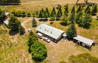 Picture of 591 Wrens Nest Road Porters Retreat, Oberon NSW 2787