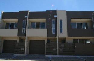 Picture of 17 O'Halloran Street, Adelaide SA 5000