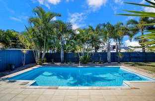 Picture of 18 Annmore Court, Andergrove QLD 4740