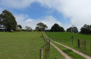 99 Coxs Rd, Red Hills TAS 7304