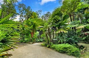 Picture of 34 Butler Drive, Kuranda QLD 4881