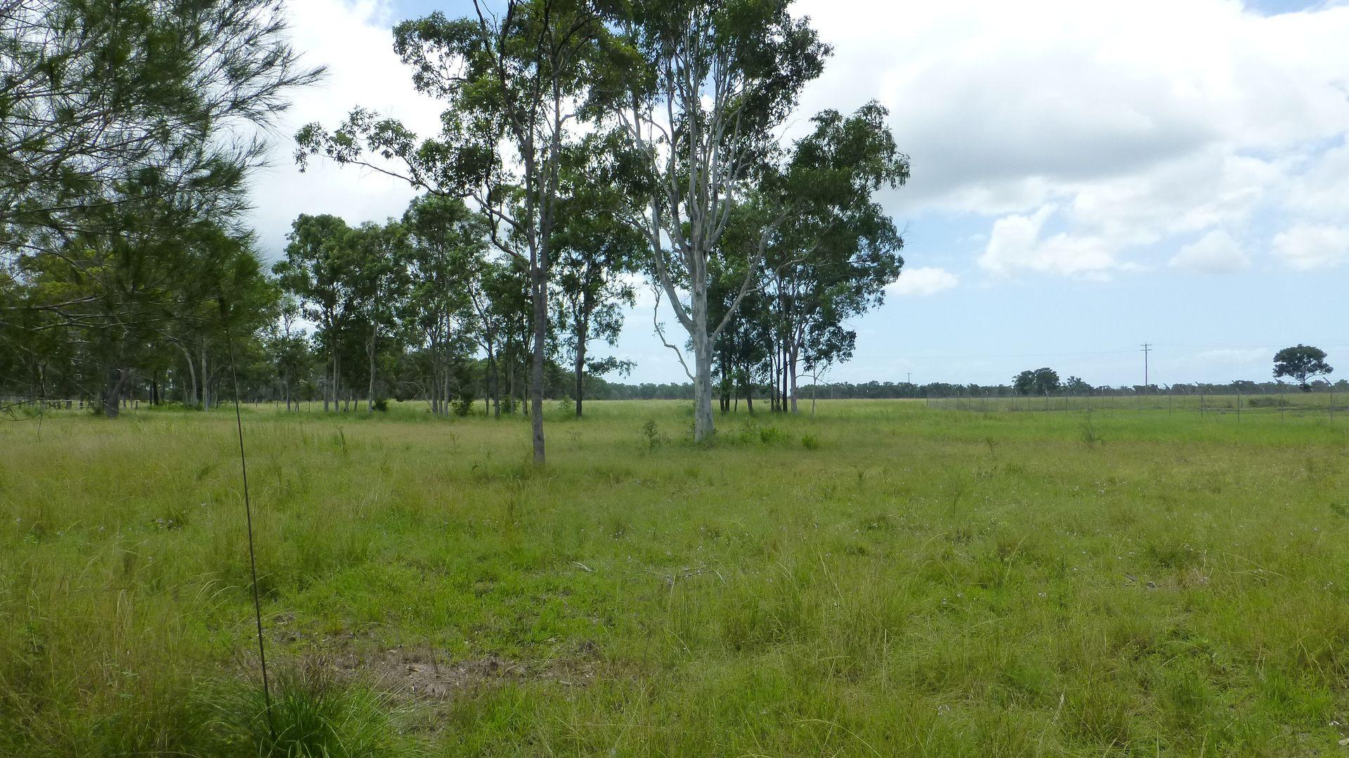 Lot 2 WOODGATE ROAD, Woodgate QLD 4660, Image 2