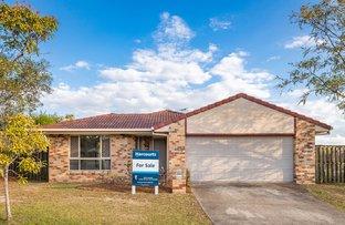 Picture of 51 Reardon Street, Calamvale QLD 4116