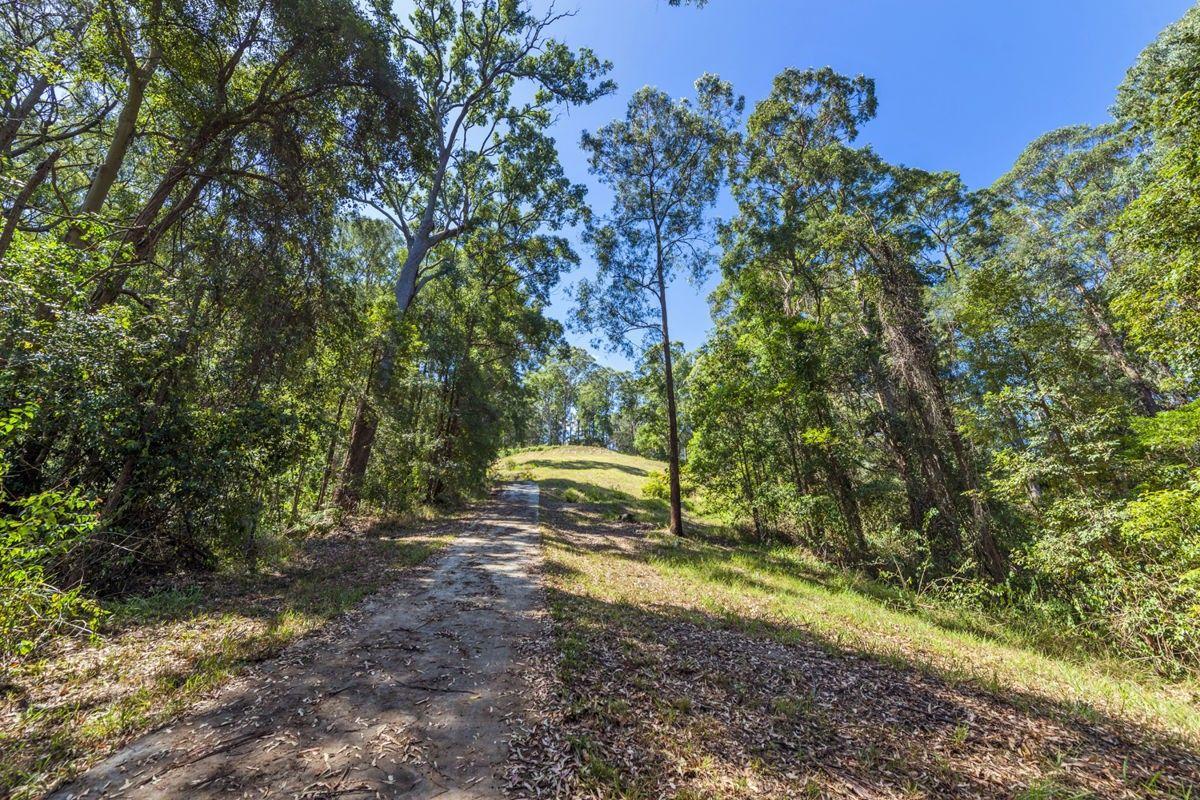 Lot 702 Bowerbird Lane, Valla NSW 2448, Image 1