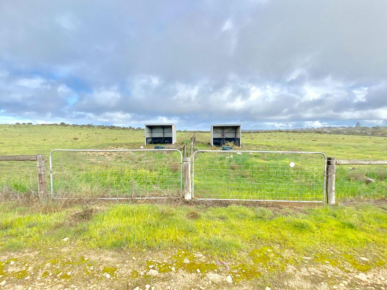 Section 64 Wallschutzky Road, Streaky Bay SA 5680, Image 2