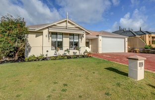 Picture of 7 Medstead Way, Butler WA 6036
