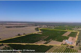 Picture of Farm 1572 42 Stannard Road, Cudgel NSW 2700